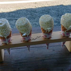 暑い日はソフトクリームがほしくなる(*^。^*)ツインスターの芸術ソフトを食べに行ってきました。