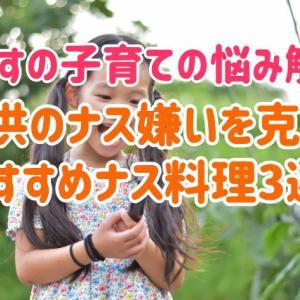 子供のナス嫌いを克服させる、おすすめナス料理3選!~ありすの子育ての悩み解決~
