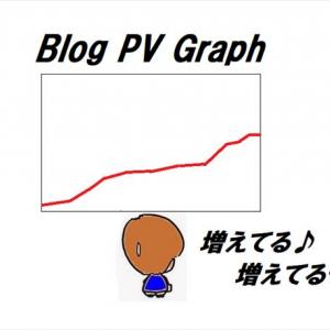 突然ブログのPV数が上昇した理由