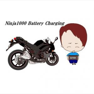 Kawasaki ニンジャ1000 バッテリー充電と充電器の比較 「シーテック」と「オプティメート」