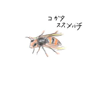 スズメバチの恐怖(下手くそ描画シリーズ)