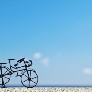 【生きる力とは】自転車は新品のまま、残されています