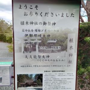 緑花木センター~植木神社