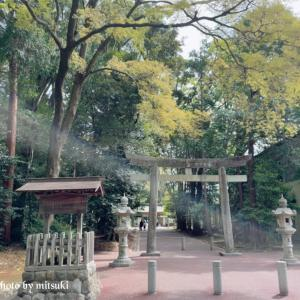 欅・楠の大樹に囲まれ御鎮まりになる~砥鹿神社