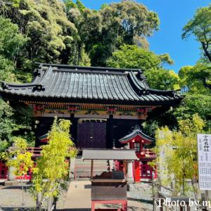 静岡浅間神社〜少彦名神社・玉鉾神社・麓山神社