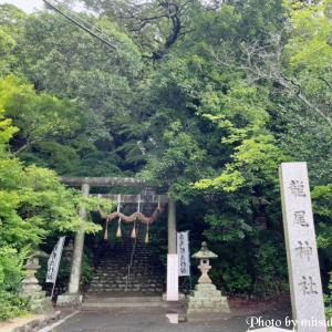 掛川城の鬼門に坐す~龍尾神社