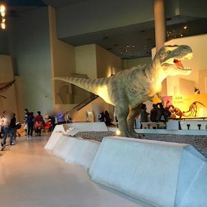 台中北区『国立自然科学博物館』特に恐竜に興味のない息子でも楽しめた動く恐竜。