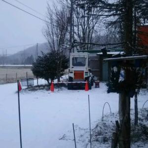 雪だ 予報通り朝から半日降りそう コーン バー 役立つ