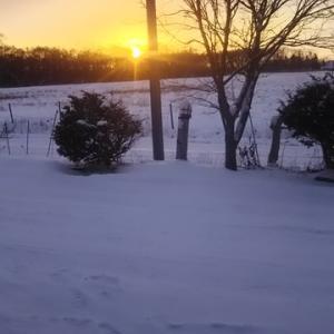 10センチ位積雪 7時前の熊牛の雪景色と日の出