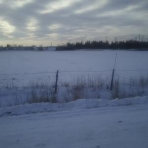 我が家の前の牧場 雪景色 これから数ヵ月