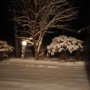 夜の雪景色 人が近付くと点灯の玄関前