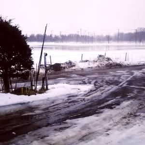 我が家の前の牧草地 大きな池になった 大雨の釧路だ