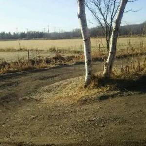 初冬の熊牛原野 当分雪は無さそう 穏やかな道東