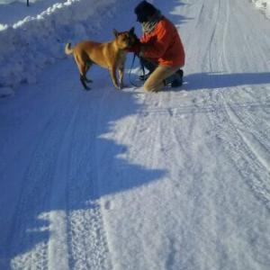 砂利道も快適圧雪道路 -2℃の暖かい流星散歩