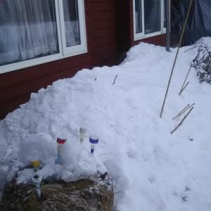 屋根からの落雪 窓の近くまでになった