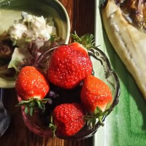 朝飯のデザート 朝採りイチゴ ちょっと贅沢