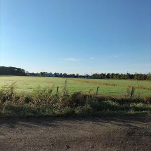 我が家の前の朝の景色 広々とした借景