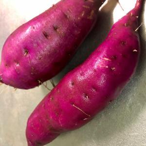 サツマイモ試し掘り🌈収穫🌈夜ごはん
