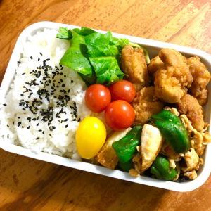 お弁当🌈種からアスパラ