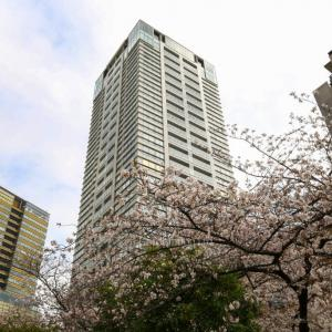立地も名前も外観も設備もかっこいい既存物件 – SAION SAKURAZAKA (サイオン桜坂)