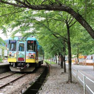 乗り鉄☆たびきっぷ (長良川鉄道)