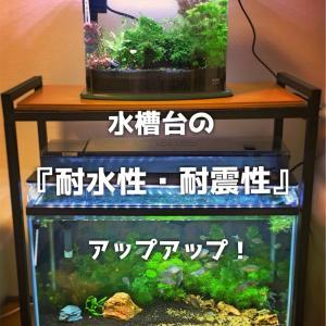 水槽台の『耐震性・耐水性』を上げる!安定感のある水槽台の作り方!