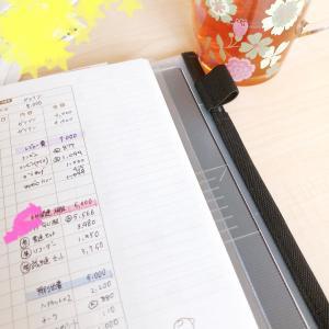 《6月家計簿〆》50万円近く出ていってました(;▽;)