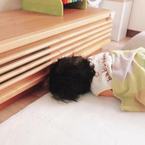 三男の「不機嫌病」と乱れまくりの10月家計簿〆ました!!