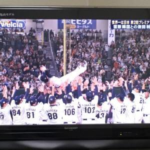 侍ジャパン プレミア12優勝おめでとう‼︎