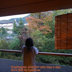 【Go To トラベル】箱根強羅温泉で朝風呂