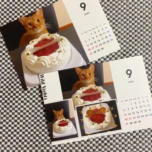 ★ルビ子カレンダー9月★
