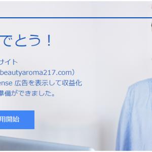Google AdSenseを理解せずに申請➜合格したらこうなってしまう【はてなブログ】