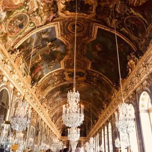 ヴェルサイユ宮殿はパリミュージアムパスではなく優先入場券の購入がおススメ!!というか必須?
