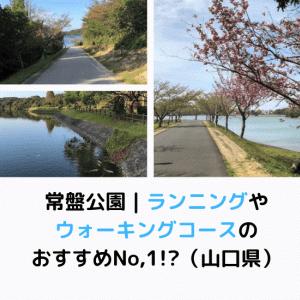 常盤公園|ランニングやウォーキングコースのおすすめNo,1!?(山口県)