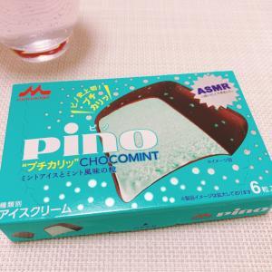 ASMR?なチョコミントアイス