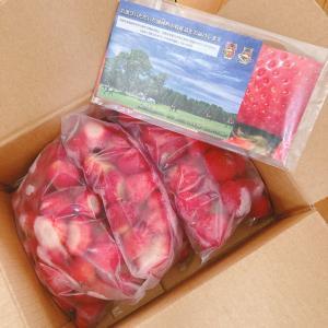 【ふるさと納税】今年は冷凍フルーツをチョイス【いちご】