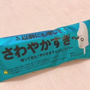 【チョコミン党】歴代史上最高のさわやかアイス【スースー注意】