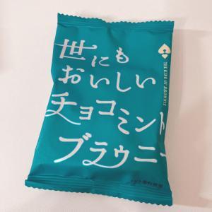 クセになる!世にもおいしいチョコミントブラウニー
