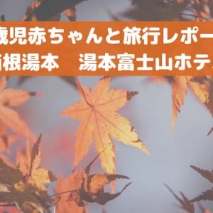 0歳児赤ちゃんと旅行レポート(箱根湯本 湯本富士山ホテル)