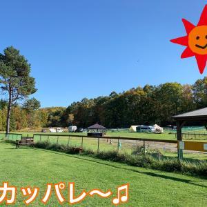 15ハスキーズが走る!スカッ晴れのなかでデイキャンプ〜〜(*^◯^*)/