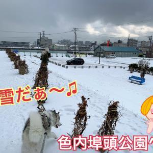 世界に1つの手作りオルゴール!道民でも小樽を満喫だぜぃ〜(^з^)-☆
