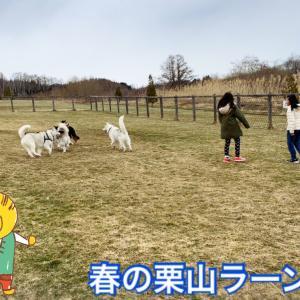 Oh〜♫ ムツゴロウさん状態!みんなイキイキ寒空のラン!(^○^)/