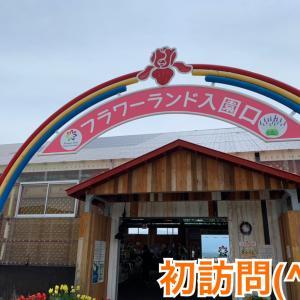これぞ北海道!大地の色彩を感じるパノラマお花畑(*^ω^*)