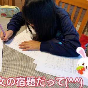 宿題のお邪魔虫!仲良し姉妹のほっこり劇場( ´∀`)