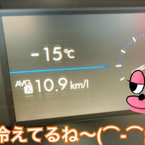 今年は寒い!だから何?の極寒好きワンコたち〜(*^▽^*)/