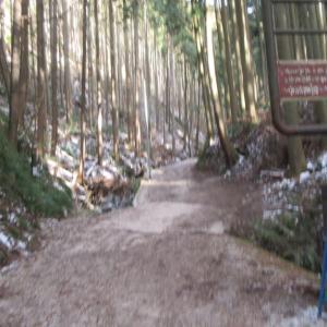 リベンジ金剛山