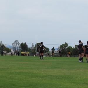 久しぶりのラグビー練習試合観戦へ。
