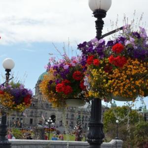ここは英国?!花の街ビクトリアでフィッシュアンドチップス&ティーアンドスコーン