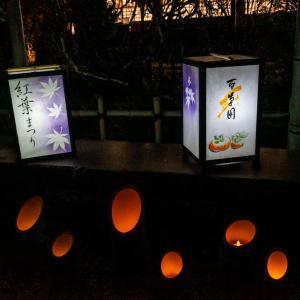 京王百草園 紅葉ライトアップ&竹灯篭展示