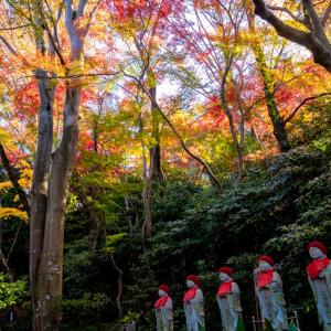 今週の高幡不動尊(11/30 その2)六地蔵さん周りの紅葉